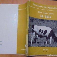 Libros de segunda mano: DIEZ TEMAS SOBRE LA VACA MINISTERIO DE AGRICULTURA MADRID 1969. Lote 205457740