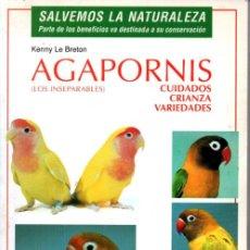 Libros de segunda mano: LE BRETON : AGAPORNIS (HISPANO EUROPEA, 2000). Lote 206205787