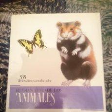 Libros de segunda mano: GRAN ENCICLOPEDIA DE LOS ANIMALES -VER FOTOS. Lote 207248393