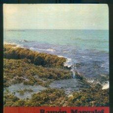 Libros de segunda mano: NUMULITE L1447 ECOLOGÍA RAMÓN MARGALEF EDIDIONES OMEGA CATEDRÁTICO DE LA UNIVERSIDAD DE BARCELONA. Lote 207572491