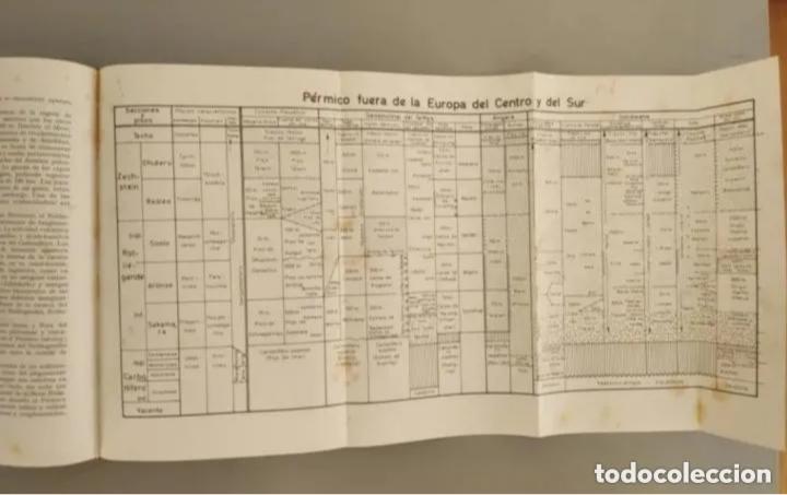 Libros de segunda mano: COMPENDIO DE GEOLOGÍA HISTÓRICA, BRINKMANN 1966 - Foto 6 - 207975622