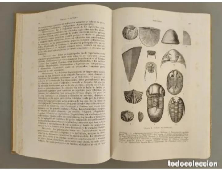 Libros de segunda mano: COMPENDIO DE GEOLOGÍA HISTÓRICA, BRINKMANN 1966 - Foto 5 - 207975622