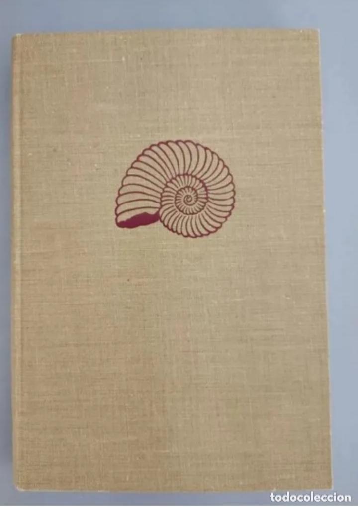 COMPENDIO DE GEOLOGÍA HISTÓRICA, BRINKMANN 1966 (Libros de Segunda Mano - Ciencias, Manuales y Oficios - Paleontología y Geología)
