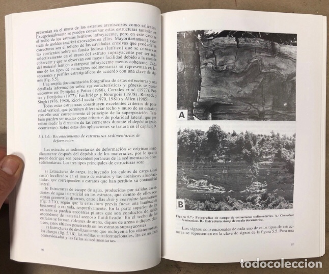 Libros de segunda mano: ESTRATIGRAFIA, PRINCIPIOS Y MÉTODOS. JUAN ANTONIO VERA TORRES. EDITORIAL RUEDA 1994. - Foto 5 - 208114006