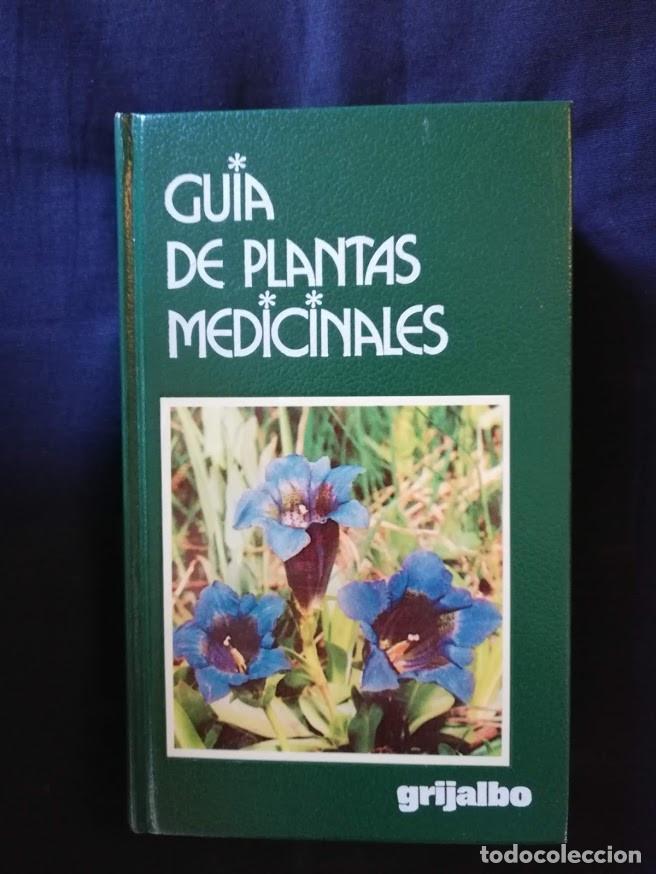 GUÍA DE PLANTAS MEDICINALES - ROBERTO CHIEJ - GRIJALBO - ILUSTRADA (Libros de Segunda Mano - Ciencias, Manuales y Oficios - Biología y Botánica)