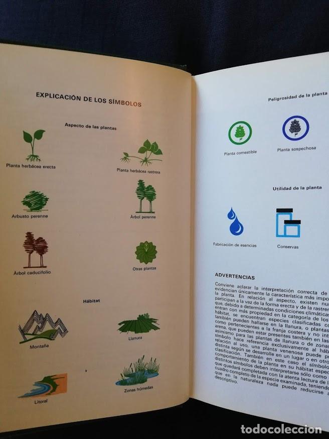 Libros de segunda mano: GUÍA DE PLANTAS MEDICINALES - ROBERTO CHIEJ - GRIJALBO - ILUSTRADA - Foto 2 - 209125866