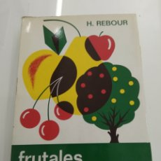 Libros de segunda mano: FRUTALES MEDITERRÁNEOS H. REBOUR VERSION ESPAÑOLA F.GIL ALBERT MUNDI PRENSA ÁRBOLES ARBORICULTURA. Lote 209318610