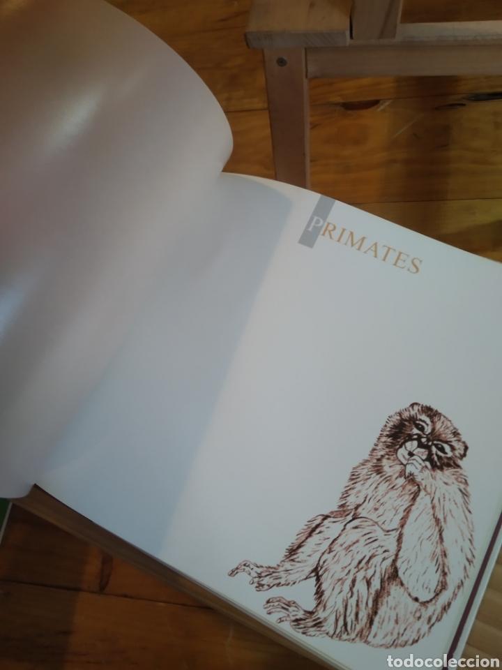 Libros de segunda mano: PEGADAS DE MAMIFEROS DE ESPAÑA. - Foto 7 - 210287470