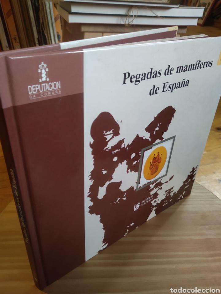 PEGADAS DE MAMIFEROS DE ESPAÑA. (Libros de Segunda Mano - Ciencias, Manuales y Oficios - Biología y Botánica)