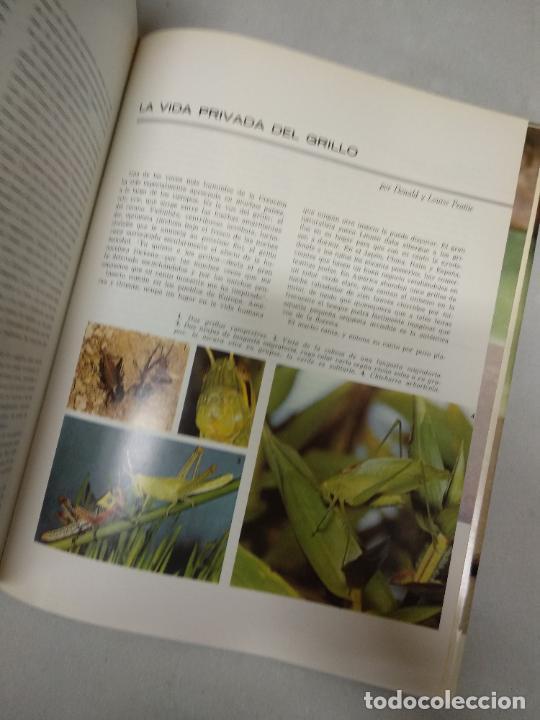Libros de segunda mano: EL FABULOSO REINO ANIMAL. Selecciones Reader´s Digest. - Foto 2 - 210418753