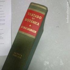 Libros de segunda mano: TRATADO DE BOTANICA. E. STRASBURGER, F. NOLL, H. SCHENCK Y A.F.W. SCHIMPER. Lote 210419545
