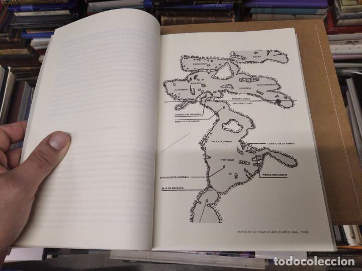 Libros de segunda mano: LAS CUEVAS DE ARTÀ . CLIMENT GARAU . EDICIONS DOCUMENTA BALEAR . 1ª EDICIÓN 2005 . MALLORCA - Foto 8 - 212153867