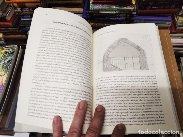 Libros de segunda mano: LAS CUEVAS DE ARTÀ . CLIMENT GARAU . EDICIONS DOCUMENTA BALEAR . 1ª EDICIÓN 2005 . MALLORCA - Foto 10 - 212153867