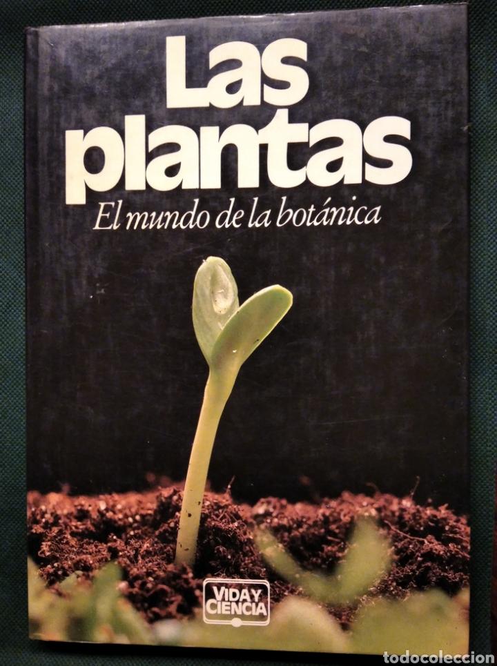 LAS PLANTAS, EL MUNDO DE LA BOTÁNICA. AÑO 1986. (Libros de Segunda Mano - Ciencias, Manuales y Oficios - Biología y Botánica)