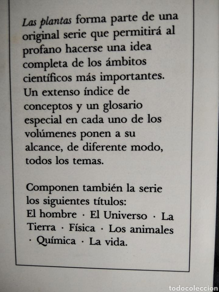 Libros de segunda mano: LAS PLANTAS, El Mundo de la botánica. Año 1986. - Foto 7 - 213445560