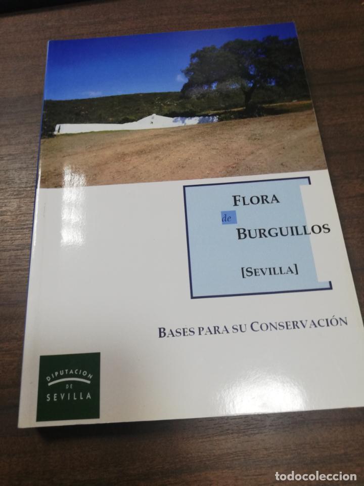 FLORA DE BURGUILLOS, SEVILLA. BASES PARA SU CONSERVACION. 2011. (Libros de Segunda Mano - Ciencias, Manuales y Oficios - Biología y Botánica)