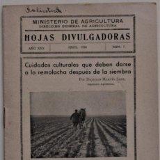 Libros de segunda mano: HOJAS DIVULGADORAS Nº 7 - ABRIL 1936 - MINISTERIO DE AGRICULTURA -LA REMOLACHA DESPUÉS DE LA SIEMBRA. Lote 214033827