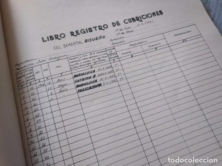 Libros de segunda mano: REGISTROS DE SELECCIÓN - ORGANIZACIÓN DE UNA MEJORA GANADERA (1956), VICENTE BOCETA, TOROS, VACAS... - Foto 3 - 214171266