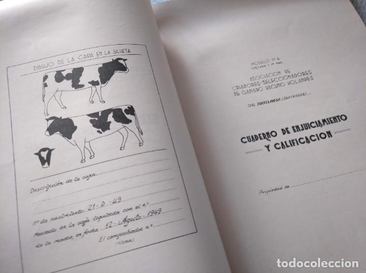 Libros de segunda mano: REGISTROS DE SELECCIÓN - ORGANIZACIÓN DE UNA MEJORA GANADERA (1956), VICENTE BOCETA, TOROS, VACAS... - Foto 4 - 214171266