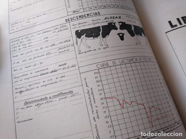 Libros de segunda mano: REGISTROS DE SELECCIÓN - ORGANIZACIÓN DE UNA MEJORA GANADERA (1956), VICENTE BOCETA, TOROS, VACAS... - Foto 7 - 214171266