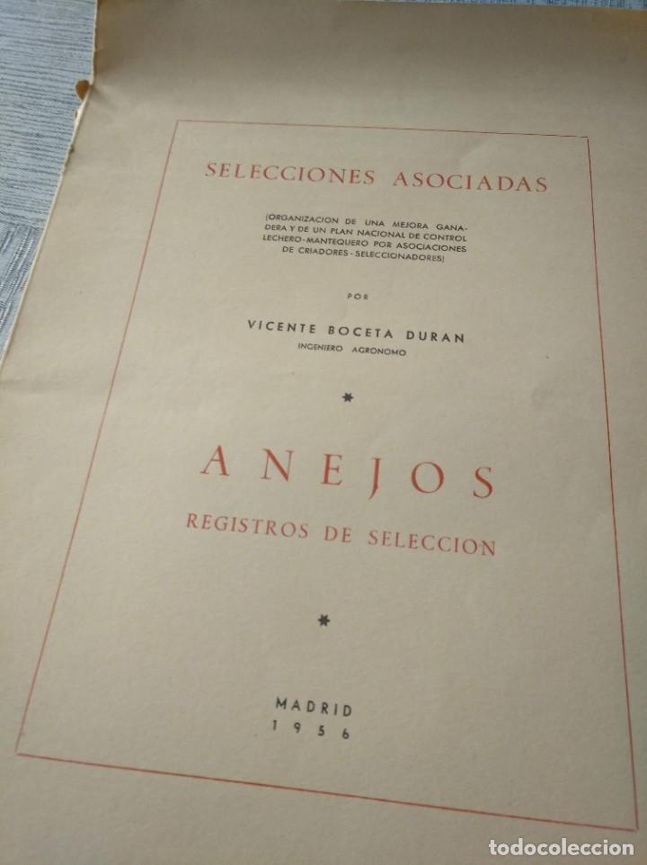 Libros de segunda mano: REGISTROS DE SELECCIÓN - ORGANIZACIÓN DE UNA MEJORA GANADERA (1956), VICENTE BOCETA, TOROS, VACAS... - Foto 9 - 214171266
