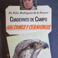 Livros em segunda mão: HALCONES Y CERNÍCALOS - CUADERNOS DE CAMPO Nº 19 RODRIGUEZ DE LA FUENTE - 1978 MARIN EDITORIAL. Lote 214290118