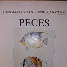 Libros de segunda mano: GRABADOS CLASICOS DE HISTORIA NATURAL, PECES 1990 LIBSA. Lote 214627171