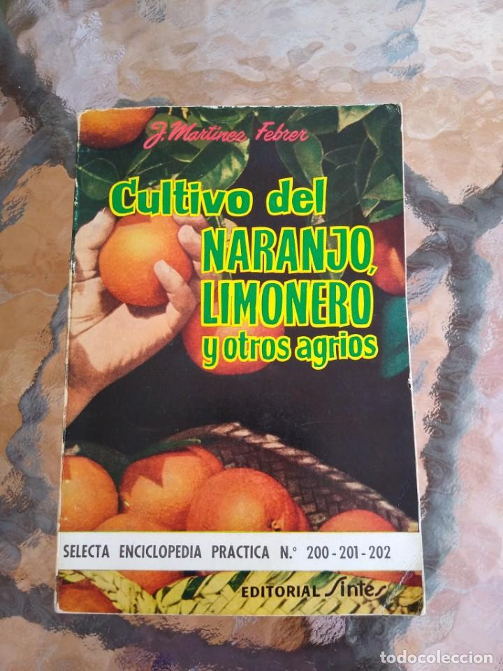 CULTIVO DEL NARANJO, LIMONERO Y OTROS AGRIOS (Libros de Segunda Mano - Ciencias, Manuales y Oficios - Biología y Botánica)