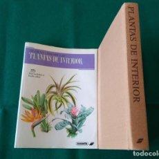 Livres d'occasion: EL GRAN LIBRO DE LAS PLANTAS DE INTERIOR - SUSAETA -JIRÍ HAAGER - AÑO 1989. Lote 215505181