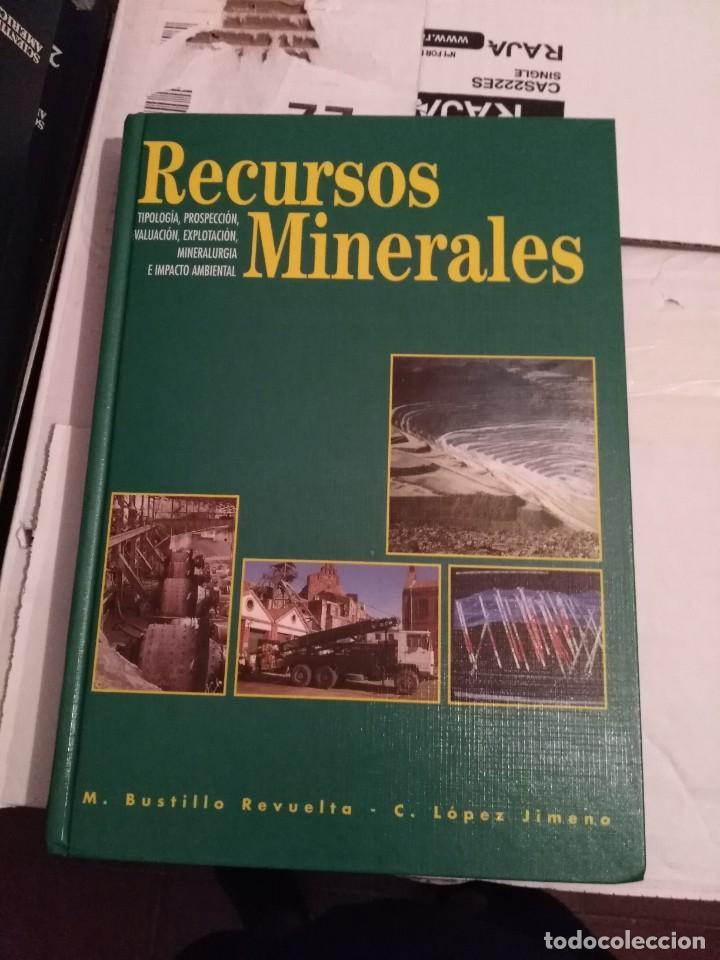 RECURSOS MINERALES - BUSTILLO Y LÓPEZ JIMENO (Libros de Segunda Mano - Ciencias, Manuales y Oficios - Paleontología y Geología)
