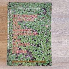 Libros de segunda mano: DICCIONARIO ILUSTRADO DE LOS NOMBRES VERNACÚLOS DE LAS PLANTAS DE ESPAÑA. Lote 216451187