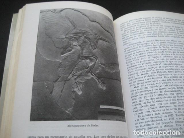 Libros de segunda mano: EL ENIGMA DE LOS DINOSAURIOS. FOSILES, PALEONTOLOGIA - Foto 3 - 216725662