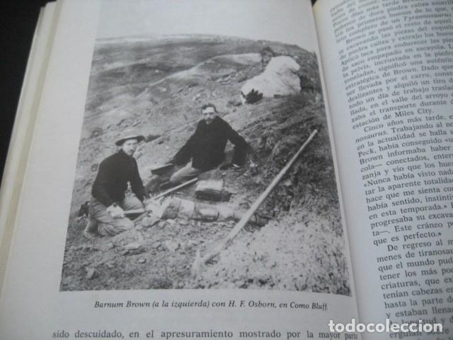 Libros de segunda mano: EL ENIGMA DE LOS DINOSAURIOS. FOSILES, PALEONTOLOGIA - Foto 4 - 216725662