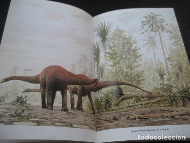 Libros de segunda mano: EL ENIGMA DE LOS DINOSAURIOS. FOSILES, PALEONTOLOGIA - Foto 6 - 216725662