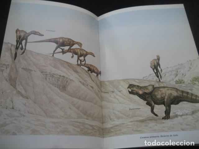 Libros de segunda mano: EL ENIGMA DE LOS DINOSAURIOS. FOSILES, PALEONTOLOGIA - Foto 7 - 216725662