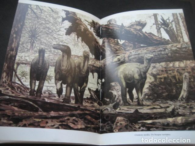 Libros de segunda mano: EL ENIGMA DE LOS DINOSAURIOS. FOSILES, PALEONTOLOGIA - Foto 8 - 216725662