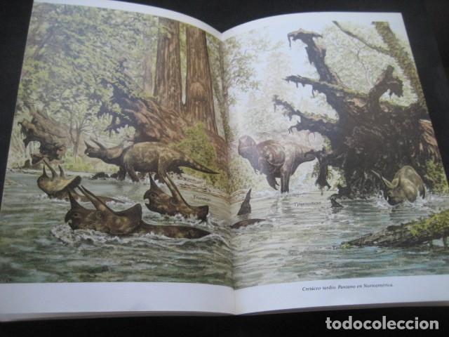 Libros de segunda mano: EL ENIGMA DE LOS DINOSAURIOS. FOSILES, PALEONTOLOGIA - Foto 10 - 216725662