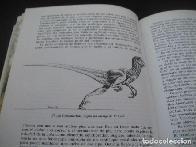 Libros de segunda mano: EL ENIGMA DE LOS DINOSAURIOS. FOSILES, PALEONTOLOGIA - Foto 12 - 216725662