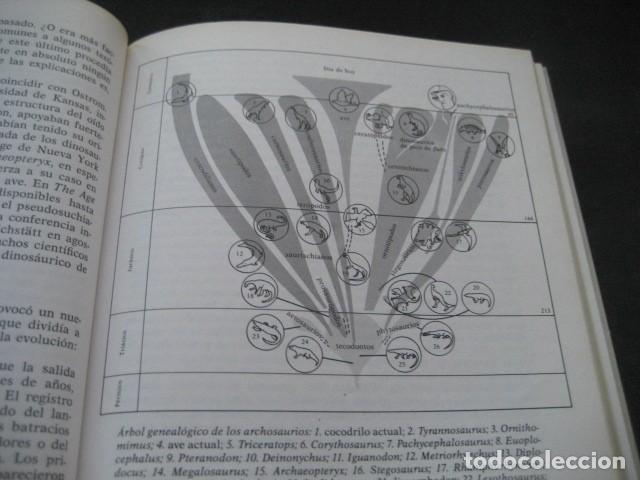 Libros de segunda mano: EL ENIGMA DE LOS DINOSAURIOS. FOSILES, PALEONTOLOGIA - Foto 13 - 216725662