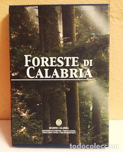 FORESTE DI CALABRIA, LIBRO EN ITALIANO,(BOSQUES DE CALABRIA) (Libros de Segunda Mano - Ciencias, Manuales y Oficios - Biología y Botánica)