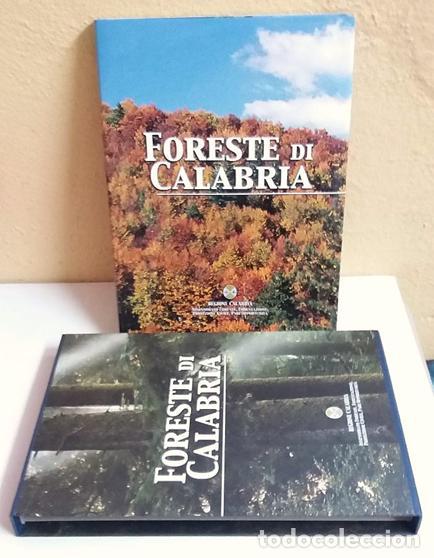 Libros de segunda mano: FORESTE DI CALABRIA, LIBRO EN ITALIANO,(BOSQUES DE CALABRIA) - Foto 2 - 217358128