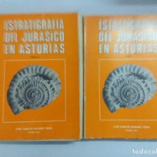 Livros em segunda mão: LIBRO/ESTRATIGRAFIA DEL JURASICO EN ASTURIAS/VOL I Y II.. Lote 217814048