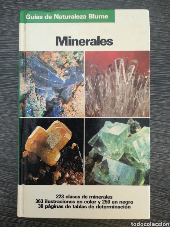 GUÍAS DE NATURALEZA BLUME. MINERALES. OLAF MEDENBACH. SUSSIECK-FORNEFELD. 1983 (Libros de Segunda Mano - Ciencias, Manuales y Oficios - Paleontología y Geología)