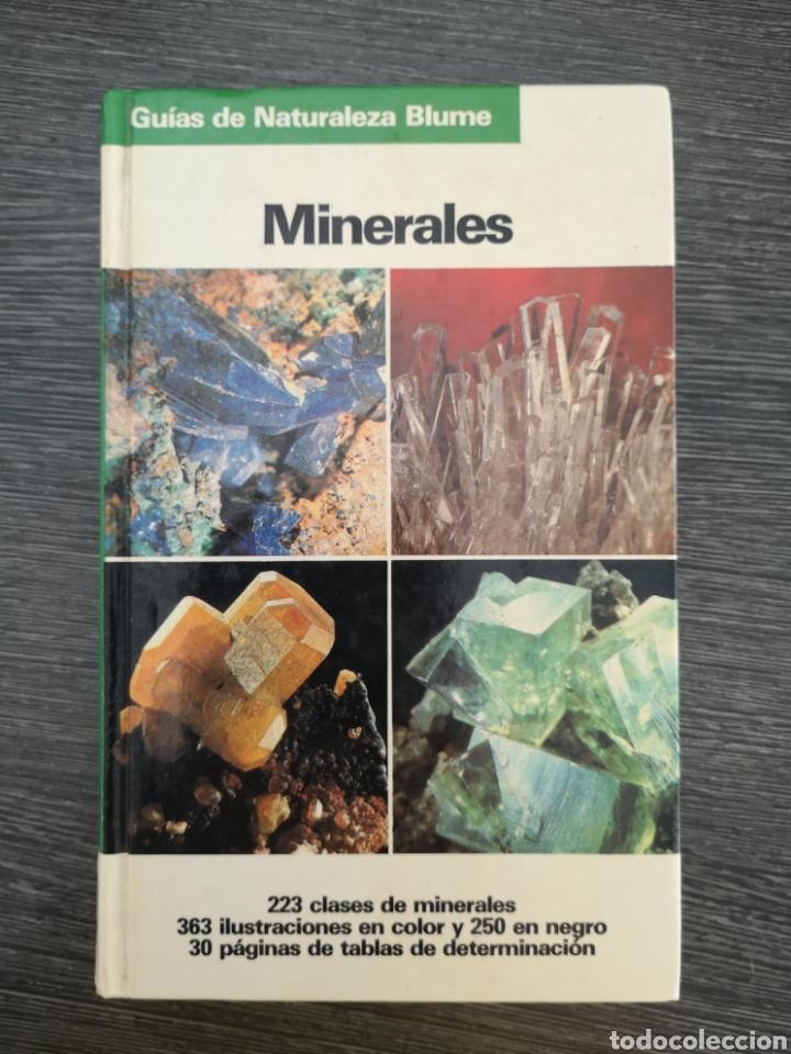 Libros de segunda mano: GUÍAS DE NATURALEZA BLUME. MINERALES. OLAF MEDENBACH. SUSSIECK-FORNEFELD. 1983 - Foto 2 - 217890043