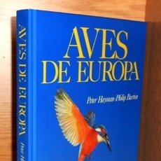 Libros de segunda mano: AVES DE EUROPA. PETER HAYMAN. PHILIP BURTON. RAPACES. NOCTURNAS. MARINAS. ETC. BELLAMENTE ILUSTRADO.. Lote 218398407