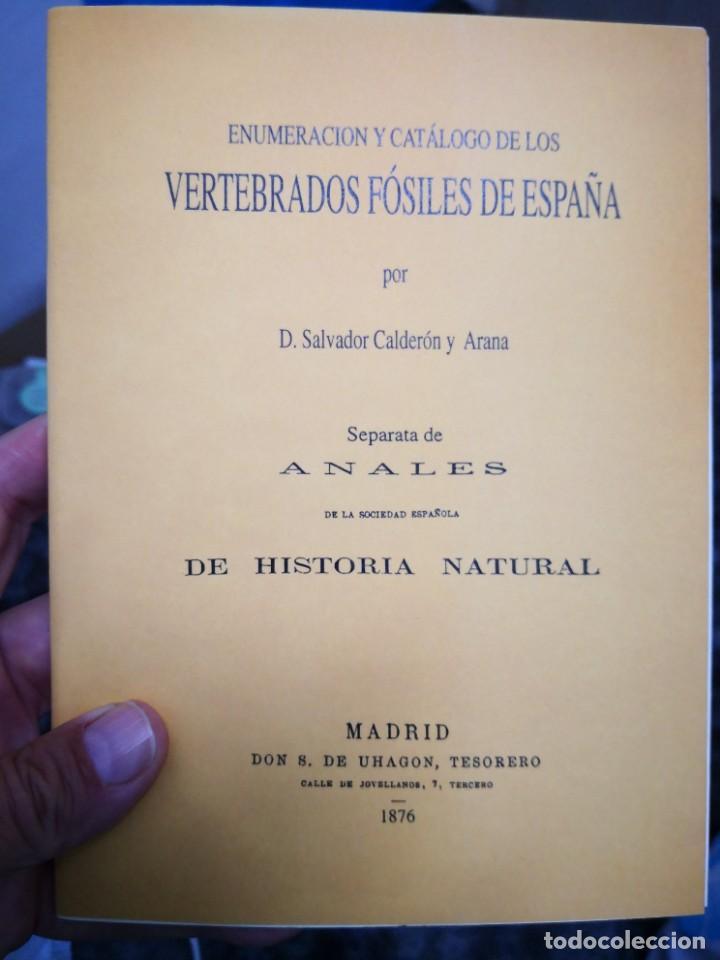 Libros de segunda mano: Enumeración y catálogo de los vertebrados fósiles de España.Salvador calderón y Arana 1876 facsimil - Foto 2 - 218522088