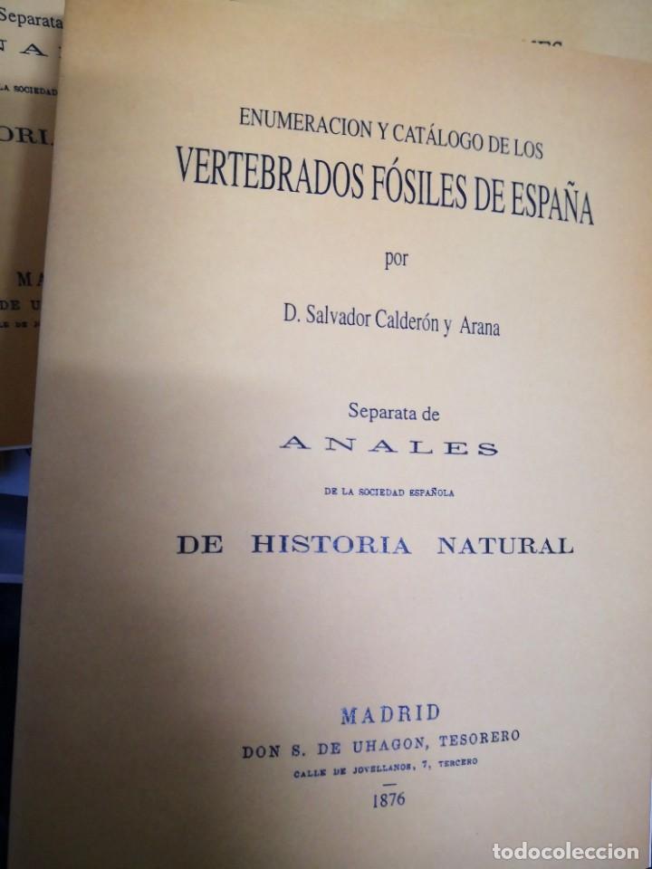 Libros de segunda mano: Enumeración y catálogo de los vertebrados fósiles de España.Salvador calderón y Arana 1876 facsimil - Foto 3 - 218522088