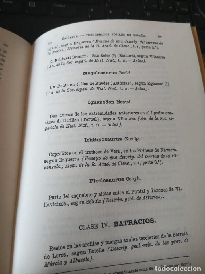 Libros de segunda mano: Enumeración y catálogo de los vertebrados fósiles de España.Salvador calderón y Arana 1876 facsimil - Foto 5 - 218522088