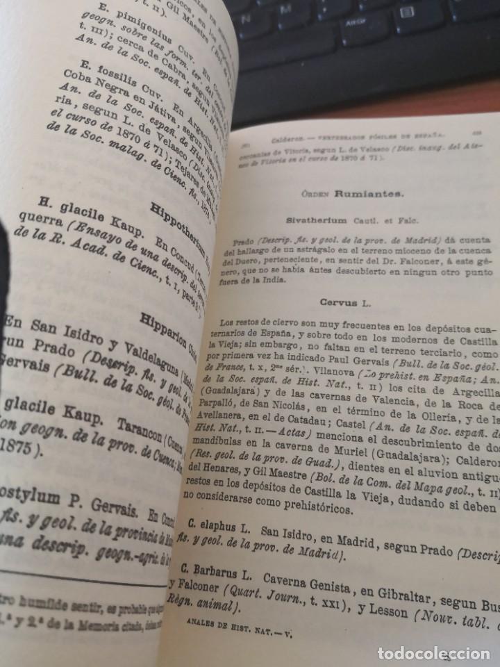 Libros de segunda mano: Enumeración y catálogo de los vertebrados fósiles de España.Salvador calderón y Arana 1876 facsimil - Foto 6 - 218522088