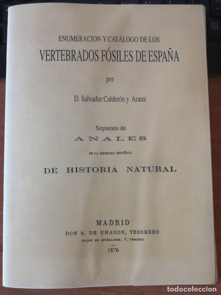 Libros de segunda mano: Enumeración y catálogo de los vertebrados fósiles de España.Salvador calderón y Arana 1876 facsimil - Foto 8 - 218522088